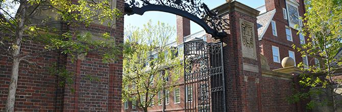 「ハーバード大と東大は単純に「どちらが優れている」とはいえない」サムネイル画像