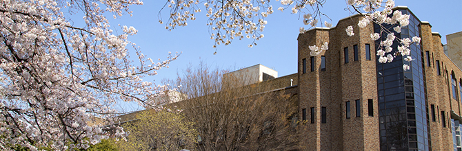 「東大のキャンパスってどんなところ?歴史あるキャンパスを一足先に満喫」サムネイル画像