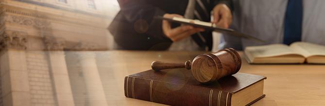 「上智大学で法学を学ぶメリットとは?特徴などをわかりやすく解説」サムネイル画像